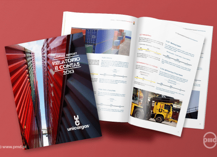 Relatório e Contas Unicargas 2013
